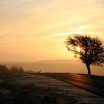 sunrise_tiffany